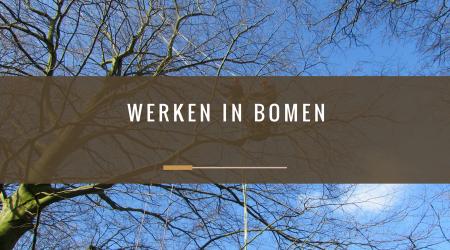 pcbomen_werken-in-bomen