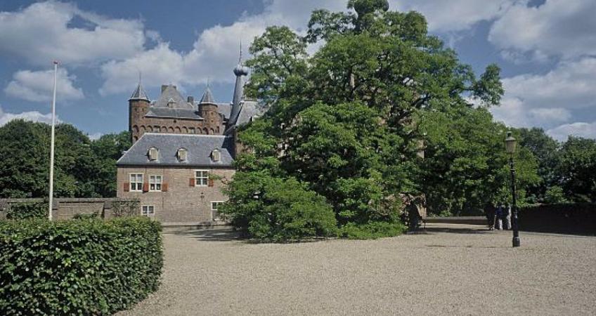 De acacia van kasteel Doorwerth