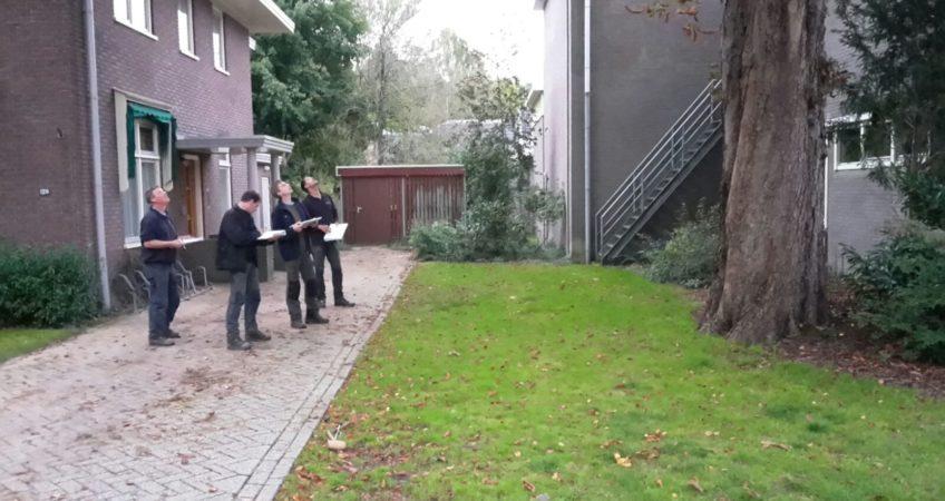 Mannen controleren boomveiligheid