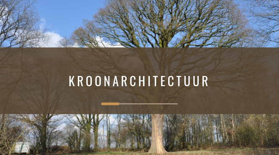 Kroonarchitectuur