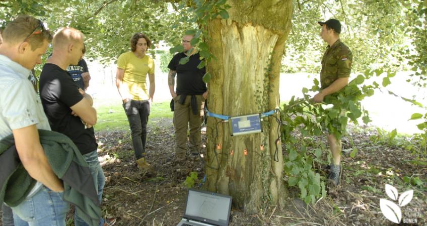 Data Inspecteur Bomen